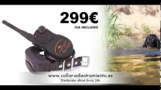 Sportdog Trainer 1600 Collar Adiestramiento Profesional Para Perros