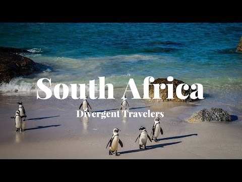 Travel Guide To Explore South Africa With The Divergent Travelers