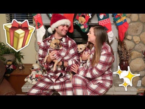 Christmas Eve Pajama Party With Our Dogs!! VLOGMAS Day 24!