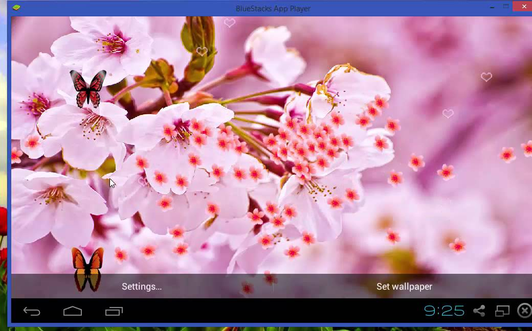 Sakura Live Wallpaper Youtube
