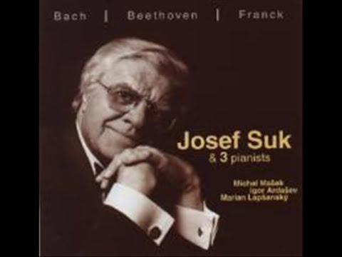 J. S. Bach  sonata for violin and piano c moll - Michal Mašek and Josef Suk