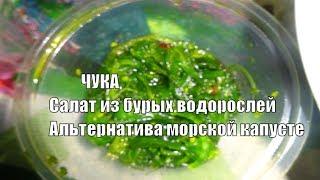 Салат ЧУКА полезная альтернатива морской капусте