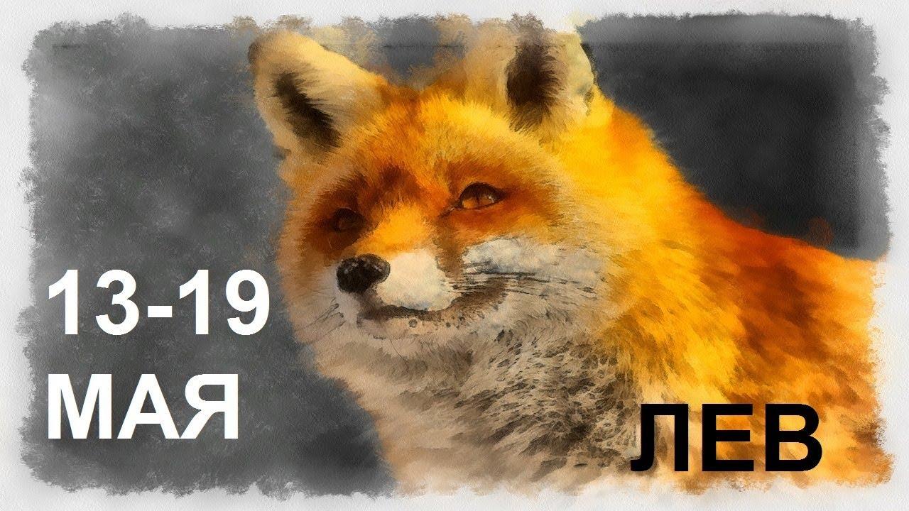 ЛЕВ Таро прогноз 13 МАЯ — 19 МАЯ Онлайн гадание