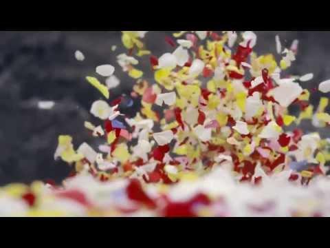 Breath-taking SONY commercial - Quảng cáo độc đáo