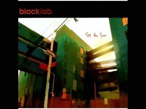 Клип Black Lab - Remember