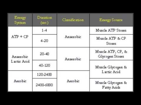 How to Train for Your Sport: Energy Systems