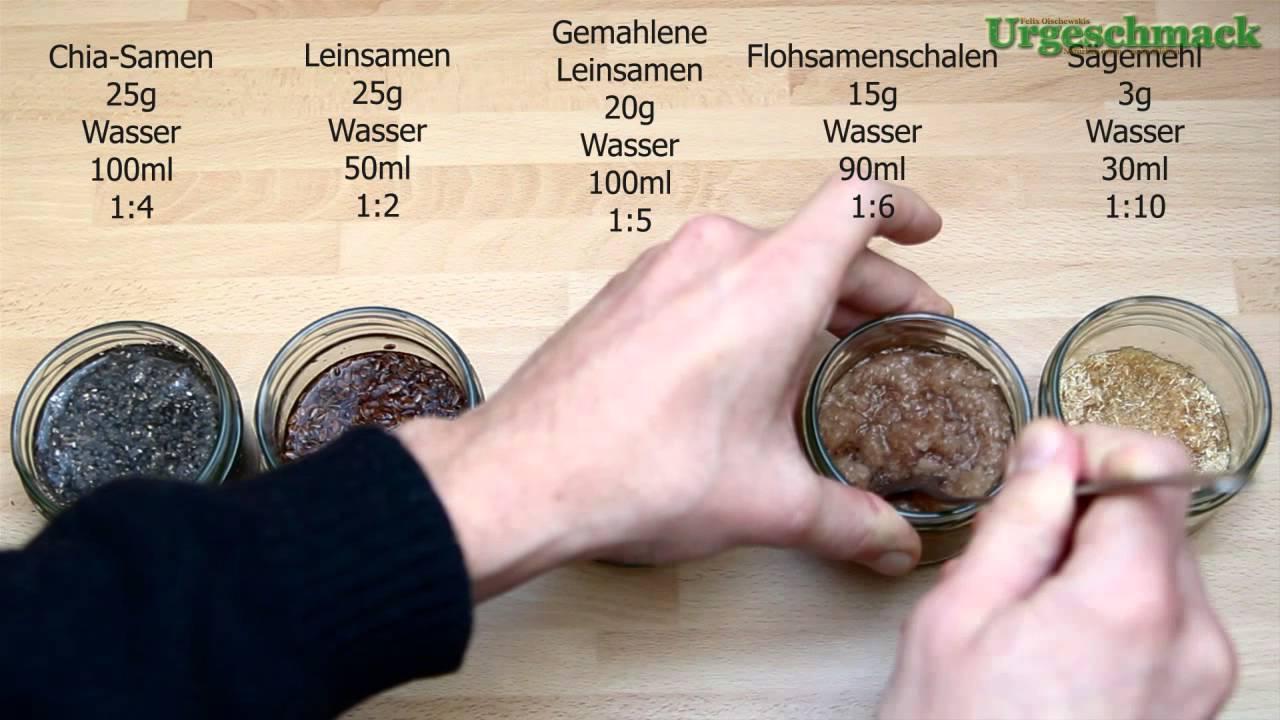 Vergleich Leinsamen Chia Samen Flohsamenschalen Und Sagemehl