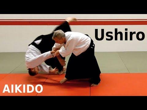 Aikido techniques on USHIRO, grips from behind, by Stefan Stenudd, 7 dan Aikikai shihan