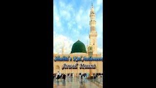 Aswad Moeeni (Shahid e Kul Aalameen) Peer Syed Ghulam Moin ul Haq Gillani