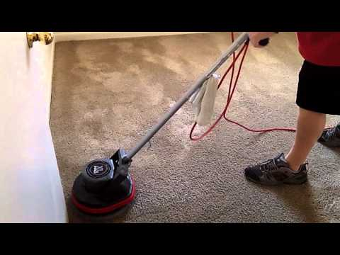Carpet Cleaning with Oreck Orbiter, Ridgid Wet/Dry Vac and Grandi Groom Carpet Rake