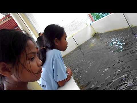 Lakbay Aral 2014 : La Union Elementary School - SEAFDEC 1