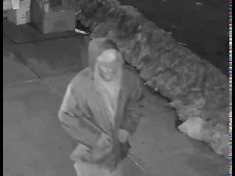 Astoria Graffiti Suspect