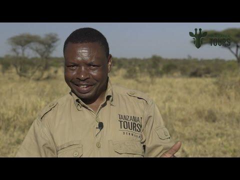 Safari guide interview Abdul