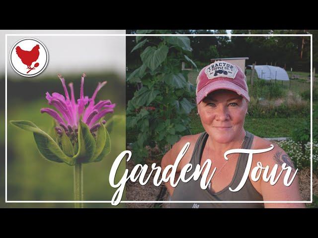 GARDEN TOUR - WEEK 5 - 2021 Garden Season