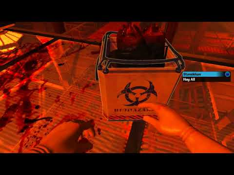 LGWI Short - Viscera Cleanup Detail: Shadow Warrior