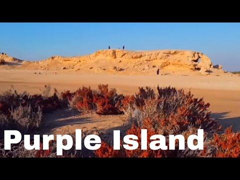 Purple Island or Al Khor Island, Al Khor, Qatar.