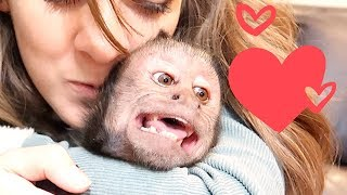 Monkey Excited to See Sister! (FREAK OUT)