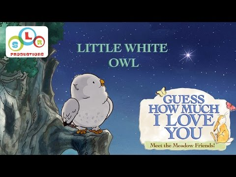 Guess How Much I Love You: Compilation - Little White Owl's Stories