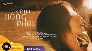 CÁNH HỒNG PHAI - NHỮNG BẢN HITS ACOUSTIC COVER ĐÃ CŨ  「Album Acoustic 2020」