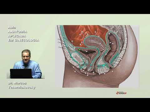dr-marcos-tcherrniakovsky-anatomia-aplicada-em-ginecologia