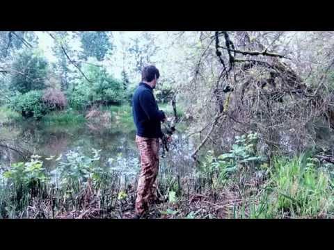 охота с луком на канале охота и рыбалка видео