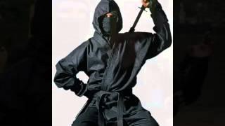 Les Sociétés Secrètes : Les Ninjas, Guerriers de l