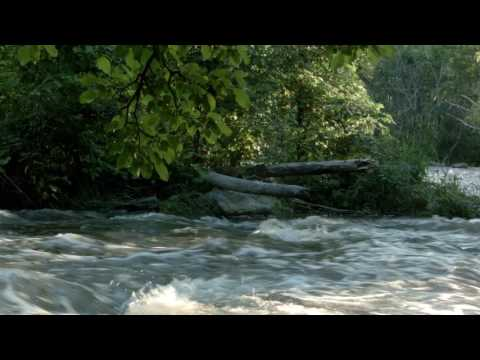 30 MINUTES: Calming Water Flow (CC BY 4.0)