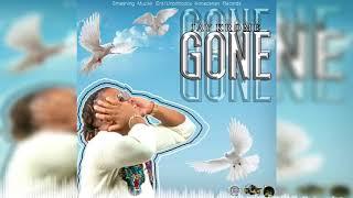 Jay Krome - Gone [Audio Visualizer]