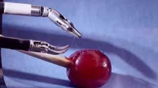 Робот хирург Da Vinci   ювелирно зашивает  плод винограда