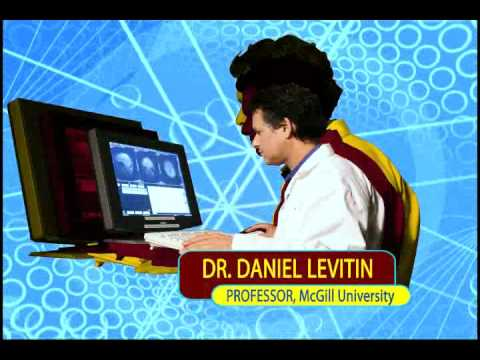 Daniel Levitin - All About Music and Psychology - interview - Goldstein on Gelt - March 2012