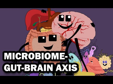 THE GUT MICROBIOME AND THE BRAIN