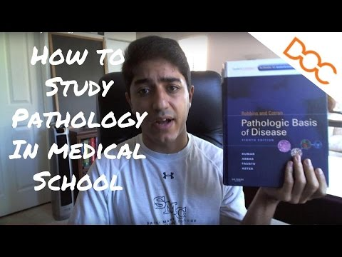 How to Study Pathology in Medical School