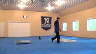 Lg (small Dog) Dog Trained Video