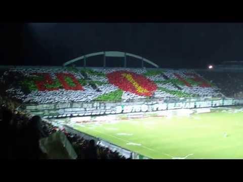 Brigata Curva Sud - PSS Vs Persibangga 2013