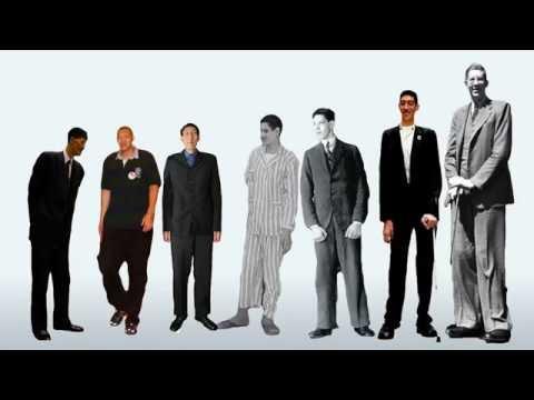 High Men In The World Youtube