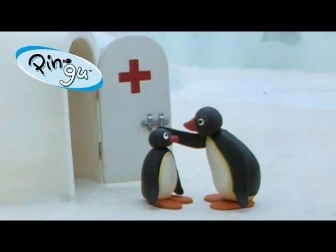 Pingu: Pingu at the Doctor