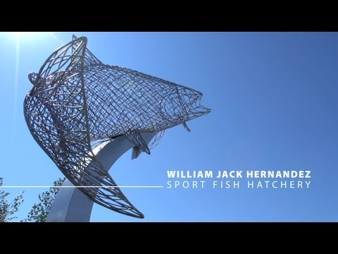 First-Ever Envision Project Award, HDR-Designed William Jack Hernandez Sport Fish Hatchery