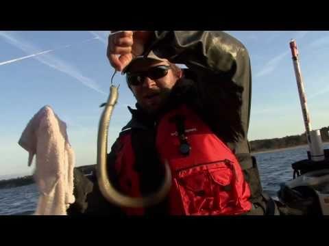kayak-fishing-game-on---part-4---chesapeake-bay