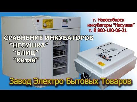 Какой купить инкубатор для яиц? Обзор автоматических инкубаторов Несушка, Блиц, китайского