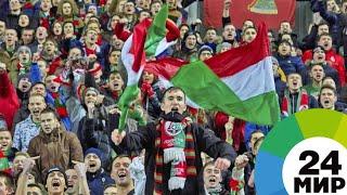 СКОЛЬКО ДЕНЕГ Я СЭКОНОМИЛ ВОЛОНТЕРСТВОМ НА ЕВРОВИДЕНИИ И ЧЕМПИОНАТЕ ПО ФУТБОЛУ УЕФА