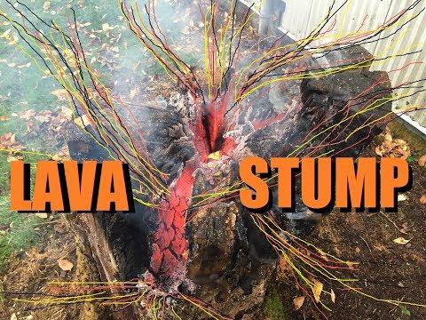 Stubborn Stump Removal