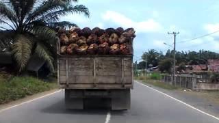 Jalan Lintas Timur Sumatera (Suban, Jambi)