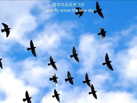 I Love You, China (with Lyrics)