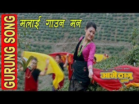 Malai Gauna Mann Lagyo || मलाई गाउन मन लाग्यो || Gurung Movie AAGE THAGU