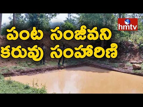Special Focus On Water Conservation In Nallajerla | West Godavari Dist | Telugu News | hmtv News