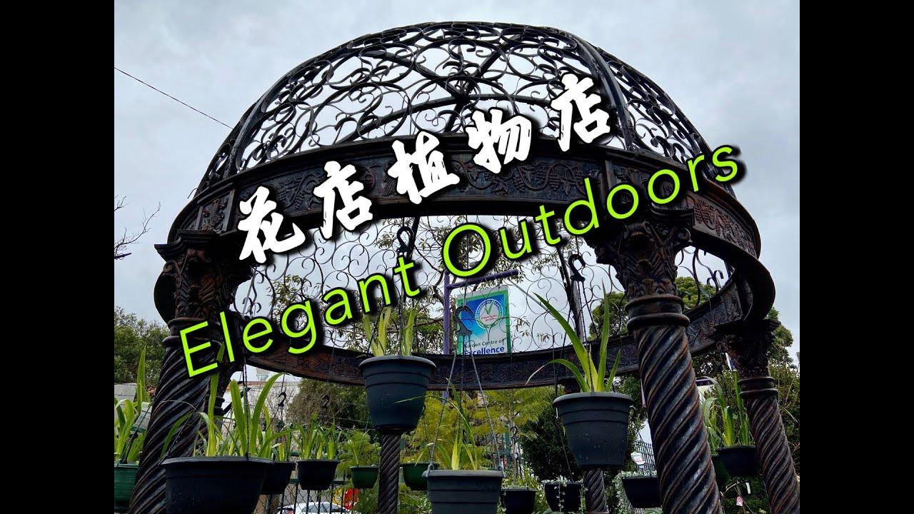静姐说花392: 一个叫优雅的花店植物店 Elegant Outdoors