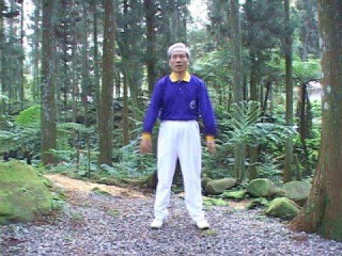 生物能醫學氣功健身運動十七法第10法前後上下甩臂法 - YouTube