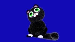 Кошка на синем фоне 3d