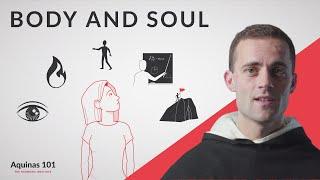 Body and Soul (Aquinas 101)