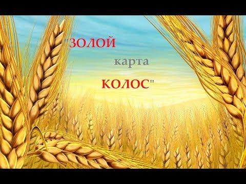 """FS-17 Стрим # 24 карта """"""""Золотой Колос( 1.4.2.0 ) Работа на лугах( Опилки )."""